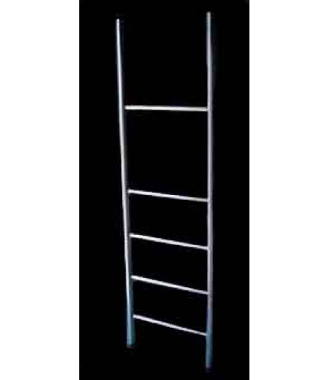 Walking Ladder