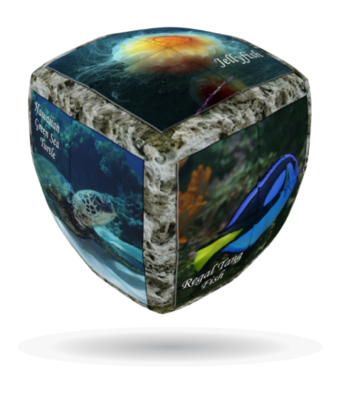 V-Cube 2 x 2 x 2 Sea World Puzzle Cube