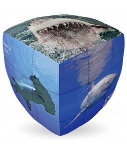 V-Cube SHARKS - 2 x 2 x 2 Pillow Cube