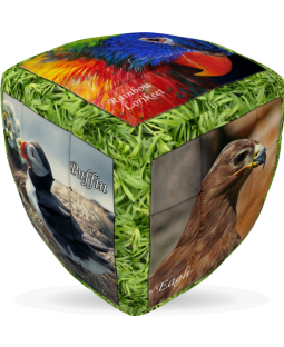 V-Cube 3 x 3 x 3 Unique Birds Pillow Cube